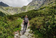 Najdôležitejší účinkujúci Tatra Flowers sú pre organizátorov Tatry a príroda